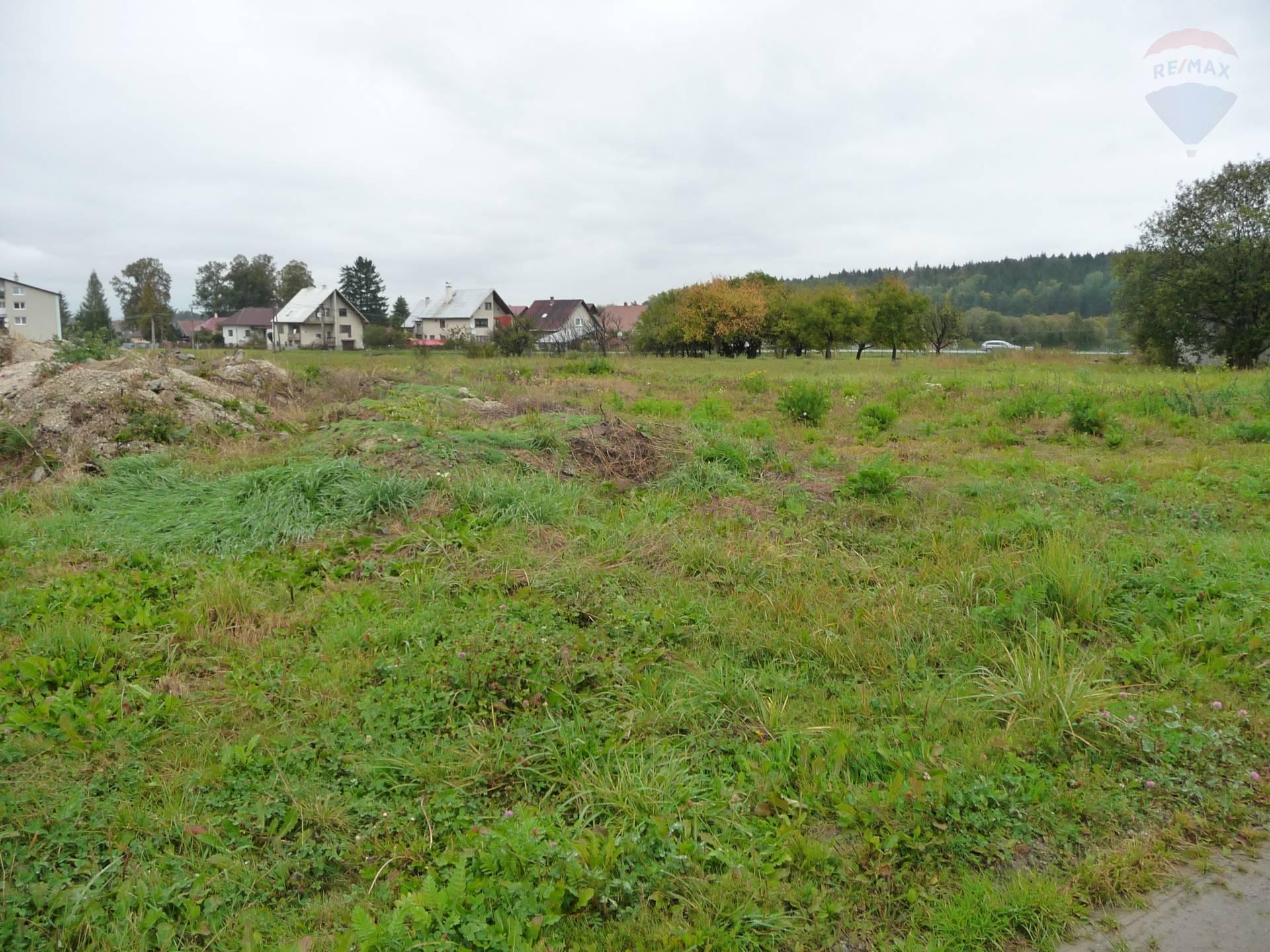 Pozemok 15000 m2 Dolná Štubňa