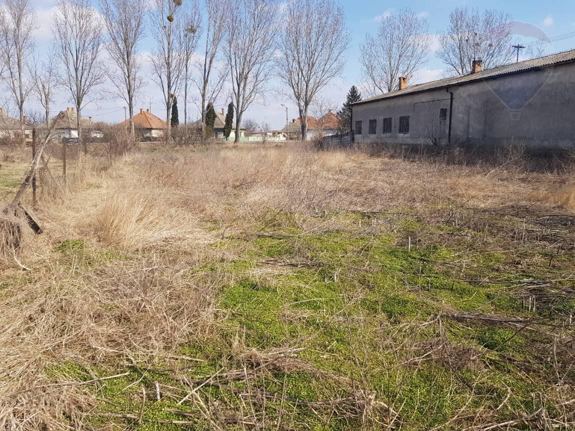 Na predaj pozemok, 2008 m2, Kolárovo_Veľký Ostrov
