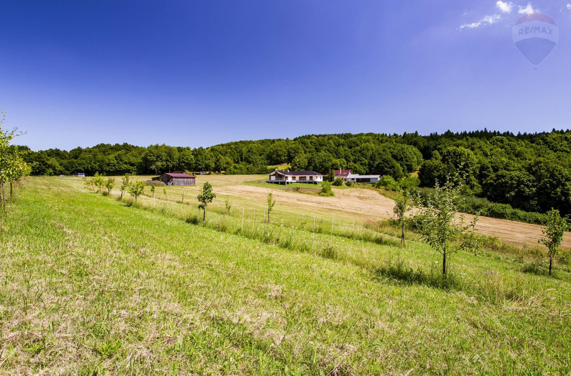 PREDAJ:Hospodárska usadlosť s luxusným sídlom na samote5,7ha,Nová Baňa-Chotár