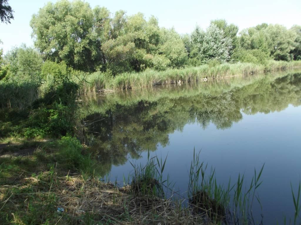 Rezervované : pozemok s jazerom .