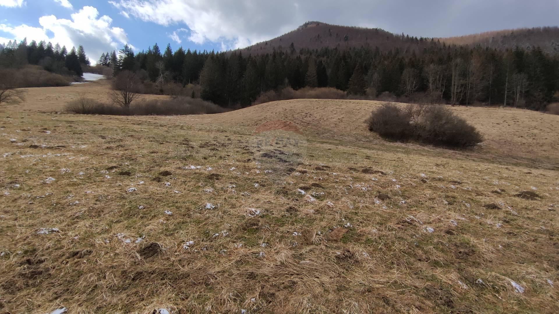 Predaj pozemku 3425 m2, Terchová -