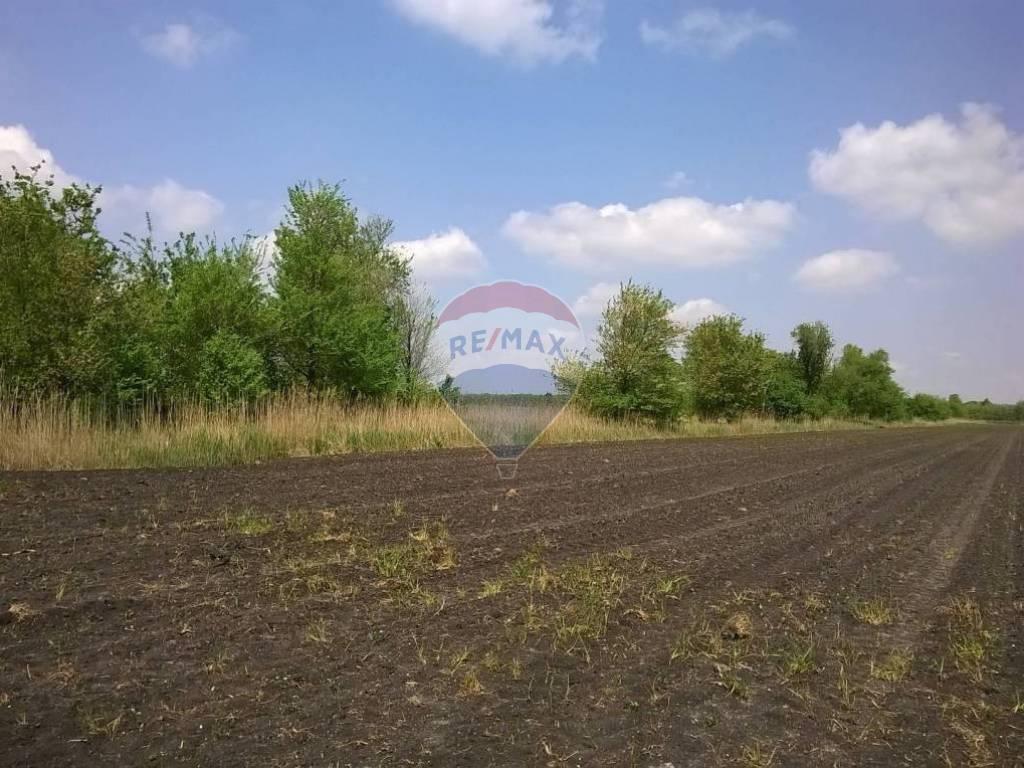 Predaj pozemku 10105 m2, Hontianske Tesáre -